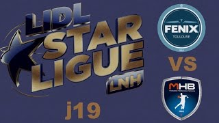 Toulouse VS Montpellier Handball LIDL STARLIGUE j19