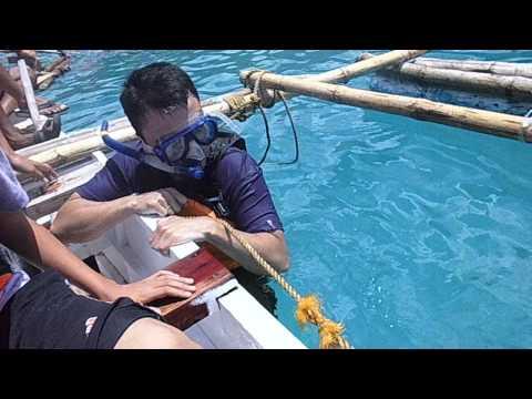 Bato Oslob wale shark experience (july 2013)