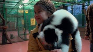 Google アプリ:パンダみたいな猿に会いたい 篇 thumbnail