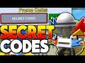 ALL *NEW* SECRET TICKET & ROYAL JELLY CODES!! - Roblox Bee Swarm Simulator (Update)