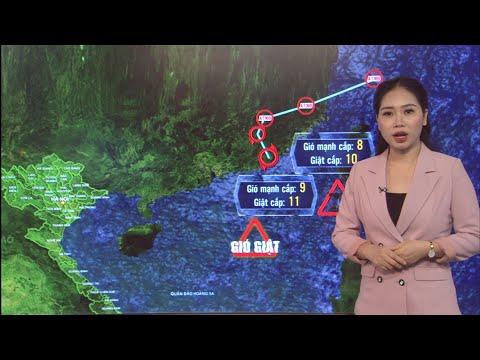 Thời tiết ngày mai 6/8: Bão số 4 đổi hướng, gây mưa dông mạnh trên vùng biển phía Bắc | VTC16