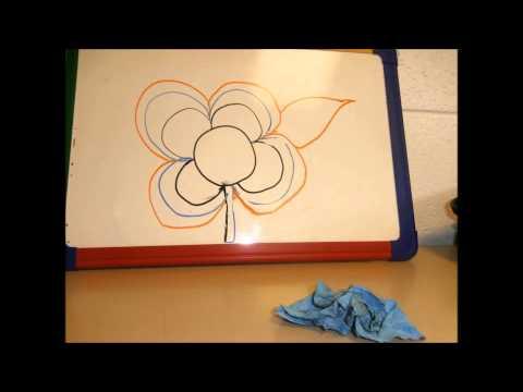 Happy Flower - Cheetham Academy