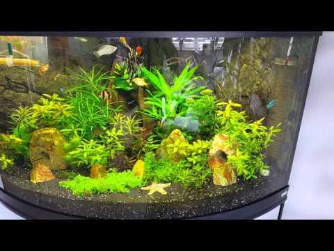 Eckaquarium fluval venezia 350 liter
