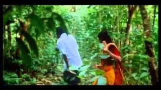 Kanaka Munthirikal-Punaradhivasam