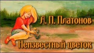 Неизвестный цветок А. П. Платонов