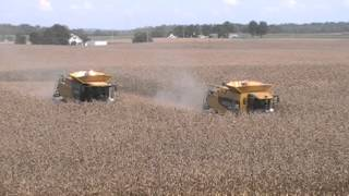 Caterpillar 595R and Claas Lexion 760TT Combines Harvesting Corn