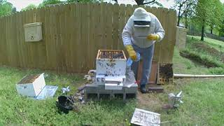 Hive spring cleanup