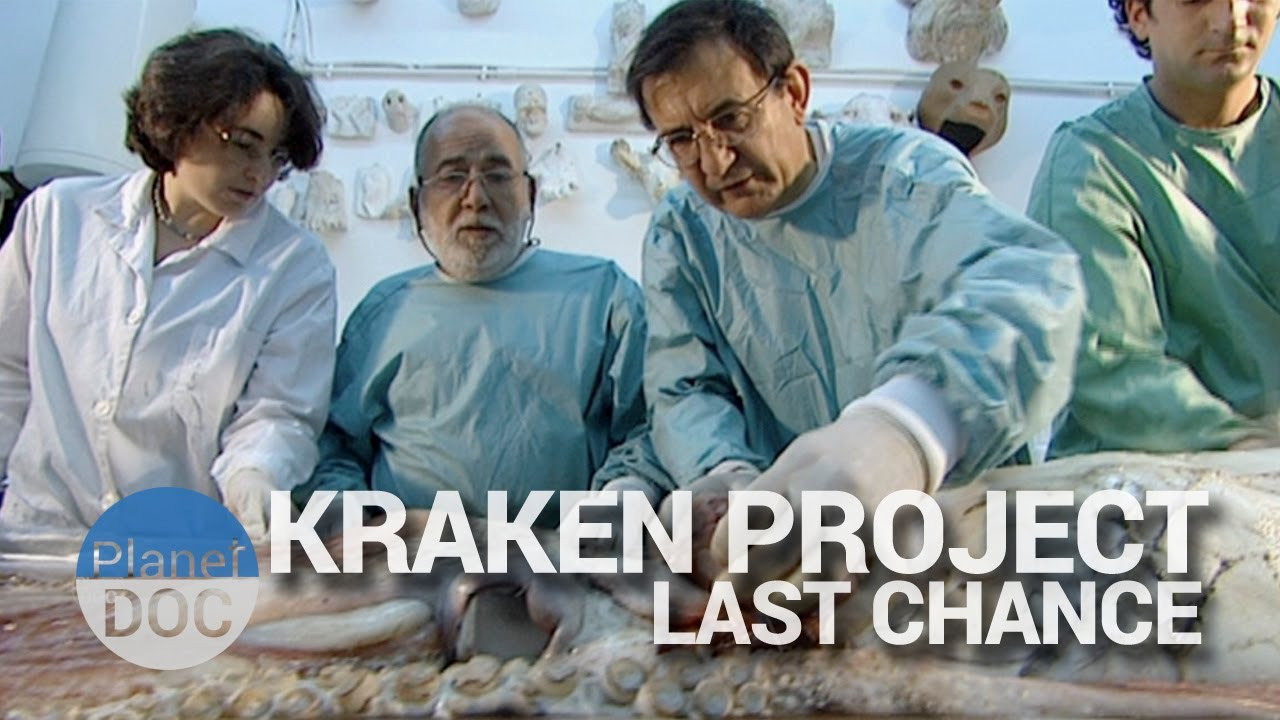 Kraken Project, Last chance | Nature - Planet Doc Full Documentaries