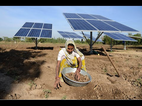 Why WTO Ruled  against India in solar power dispute? Explained