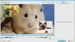 Профессиональная программа для создания слайд шоу ФотоШОУ PRO