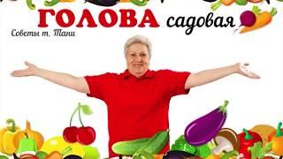 Голова садовая - Подвязка грунтовых томатов