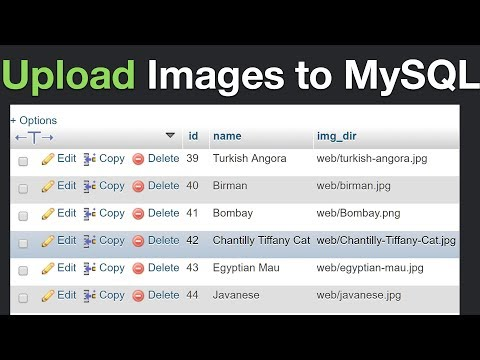 How to Insert Images to MySQL and Display Them Using PHP