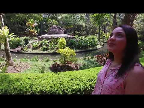 El vídeo del Parque Los Tecajetes, Xalapa