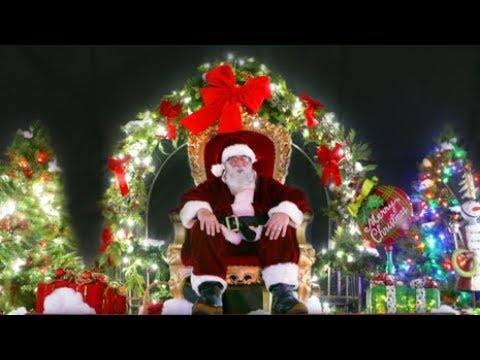 Your Dallas Zoo Lights Experience Youtube