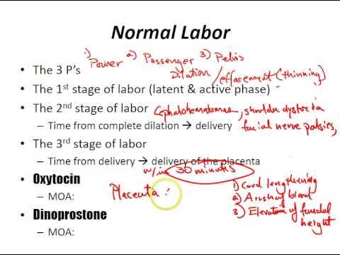 USMLE Review - Obstetrics (Labor)