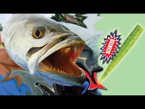 Targeting Speckled Trout - Kayak Fishing