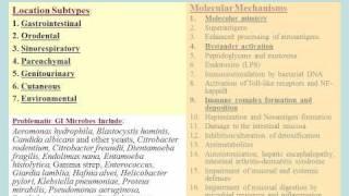 Dysbiosis, Inflammation, Autoimmunity: Lupus, Rheumatoid Arthritis, Psoriasis, Sjogrens syndrome