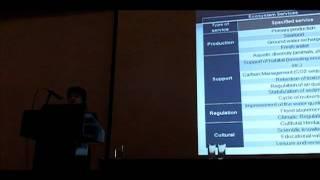 Ecosystem services inclusive SEA