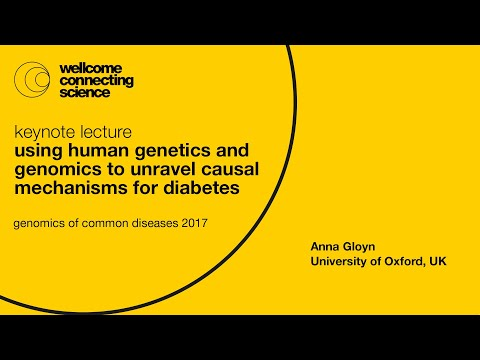 Using human genetics and genomics to unravel causal mechanisms for diabetes