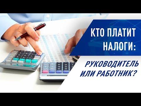 Кто платит налоги: руководитель или работник?