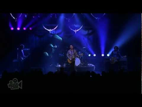 Hoodoo Gurus - Zanzibar (Live at Dig It Up! Sydney) | Moshcam