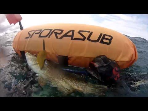 2014 08 22 Vidéo PNJ AEE SD23 Pêche sous marine Plage la Mare ST CAST LE GUILDO