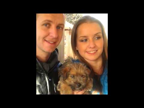 Woody The Norfolk Terrier Puppy (2013) Video