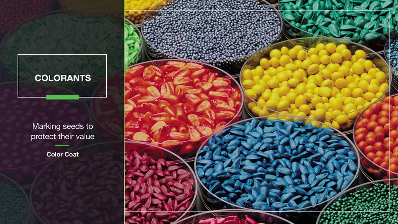 Seed Solutions  Now you have more ways to grow with BASF