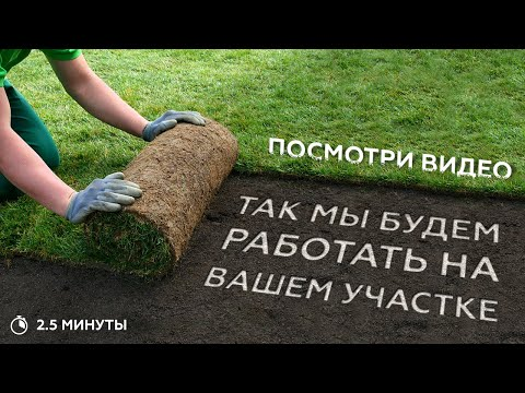 Устройство посевного газона. Основные этапы устройства газона