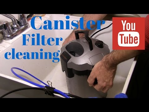 canister filter cleaning for saltwater aquarium : rotter tube reef