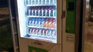 다낭여행 음료자판기 이용해보기 !! 콜라가격