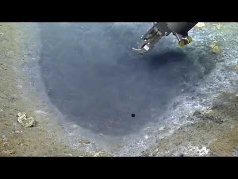 Brine Puddle Dunk | Nautilus Live