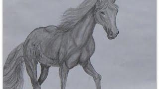 Как нарисовать лошадь простым карандашом поэтапно, конь с гривой(Видео урок как нарисовать лошадь простым карандашом. Во время рисования мы не применяли резинку для стиран..., 2015-05-23T18:00:06.000Z)