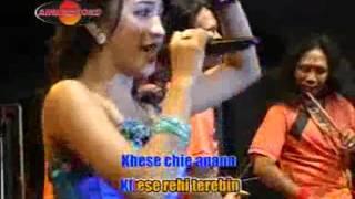 Gambar cover Merinda Anjani - Shaiba (Official Music Videos)