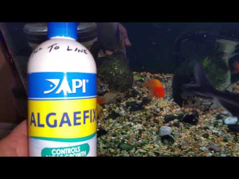 No more algae on your aquarium hood light fixture cover using API ALGAEFIX DIY