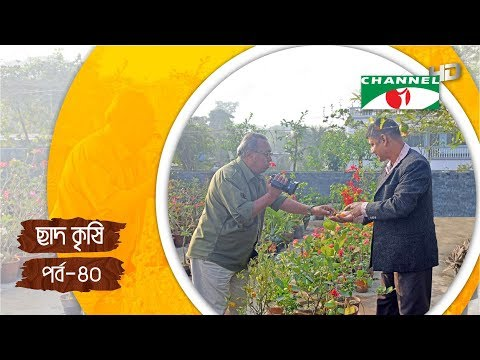 Rooftop farming (EPS 40)