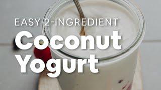 How to Make Coconut Yogurt (2 Ingredients!)