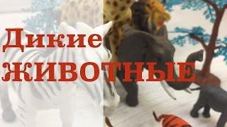 Дикие животные, коллекция игрушек из джунглей. Лесной зоопарк