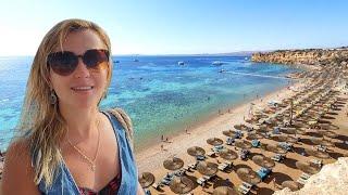 Reef Oasis Beach Resort Egypt Sharm El Sheikh Reviews Отзывы Відгуки туриста Антонів Тур