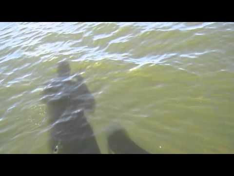 Shore Fishing Walleye Dryden Ontario