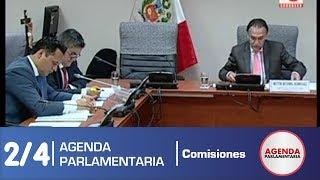 Sesión Comisión Investigadora Madre Mía 2/4 (01/06/18)