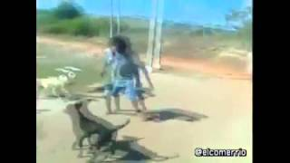 Borracho vs perros (estilo capoeira?