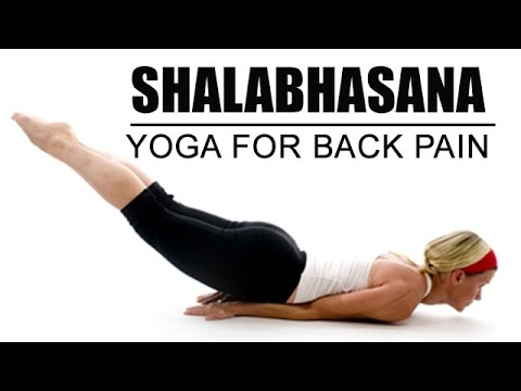 shalabhasana  yoga pose for back pain  youtube