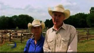 Reportage TV Vendée Lazy VP Ranch Cutting Show
