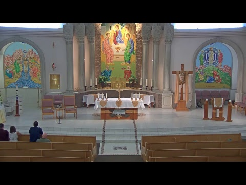 Sun. 6/18/2017 - 5pm Mass - Fr. John Hannigan