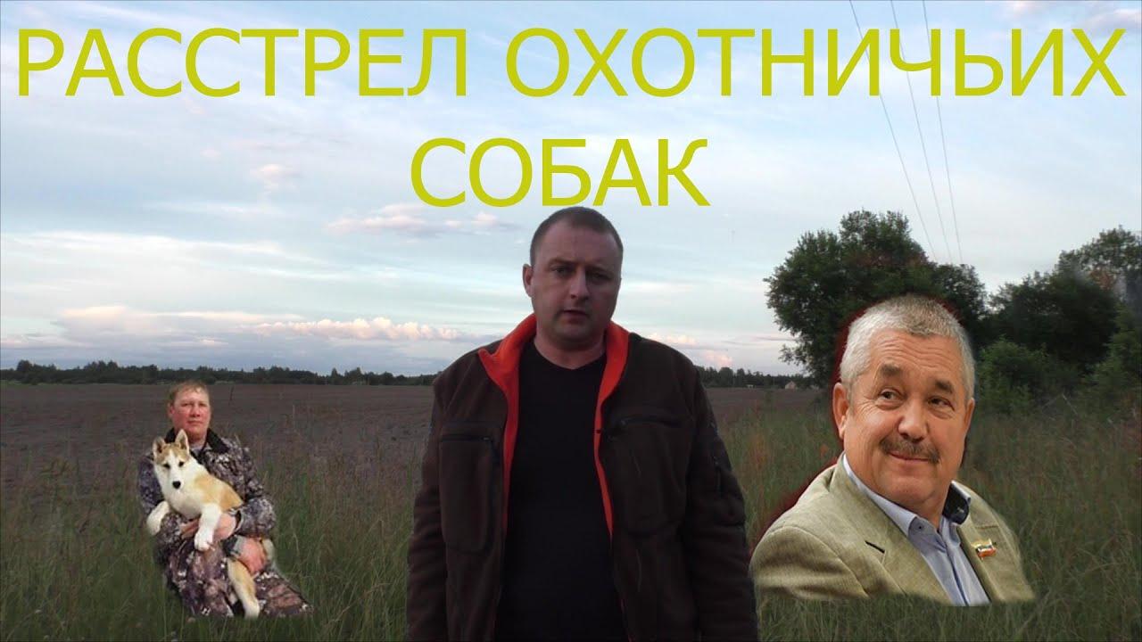 УБИЙСТВО западно-сибирских лаек. Друзья нужна ваша помощь. Максимальный репост!!!