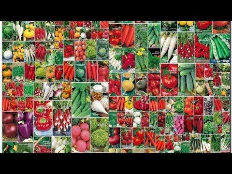 Обзор теплиц и где покупать семена и .... на 2019г