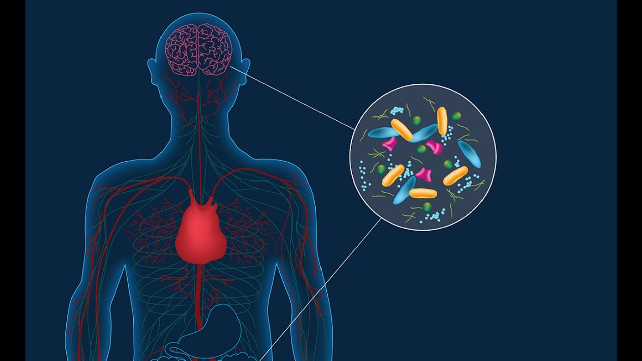 When Gut Bacteria Change Brain Function >> Parkinson S Disease Linked To Microbiome Www Caltech Edu