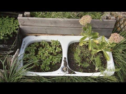 Sprechende Gärten - Die Berliner Urban Gardening Bewegung (Dokumentarfilm)