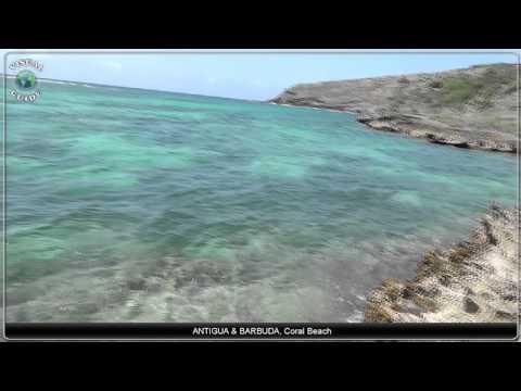 Antigua and Barbuda Coral Beach